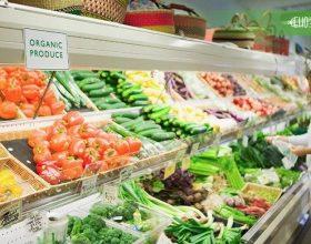 Российские производители органической продукции получат поддержку из госбюджета.