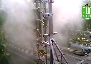 Влияние воздушного потока на опрыскивание растений томатов в теплице.