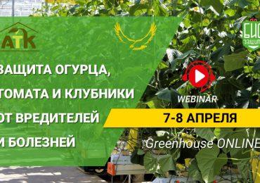 Вебинар Greenhouse ONLINE — 7-8 апреля!