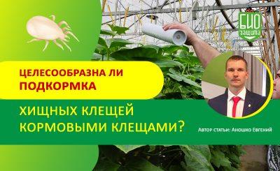 Аношко Евгений