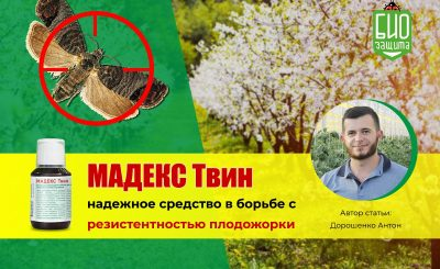 Мадекс Твин Дорошенко