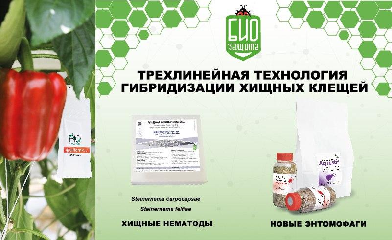 Стенд Биозащита