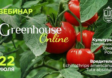 Вебинар Greenhouse Online 22 июля 2021 года